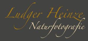 Ludger Heinze Naturfotografie